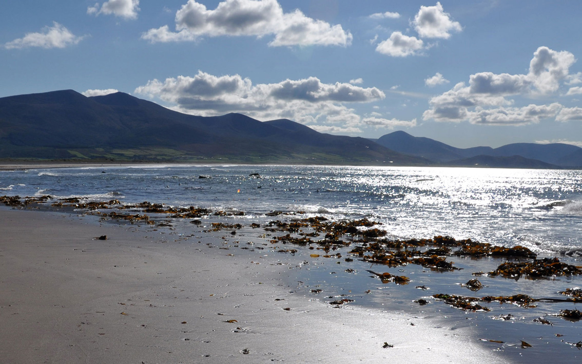 Enjoy the nearby stunning beaches of Tralee Bay